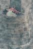 9409349500_2c73f62d6f_t