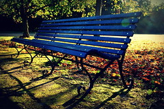 Autumn bench photo by catkin314