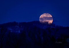 Valentine's Full Snow Moon Rising - Roanoke 2014 photo by Terry Aldhizer