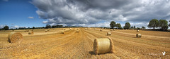 Hay Bales Panorama photo by Canon Queen Rocks (430,000 + views)