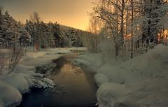 A Winter Wonderland photo by Andy Watson1