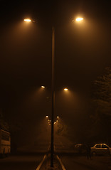 Street Light photo by Anuj Kumar Sharma