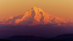 Mt. Hood Glowing in the Sunset photo by Mr. Ansonii