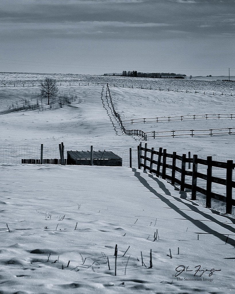 Fencelines