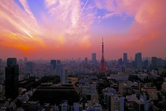 The evening city view (Featuring Tokyo Tower) photo by Masa_N
