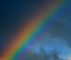 Rainbow Closeup photo by Dave McGlinchey