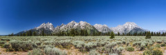 20130903_F0001: Another panoramic view of the Teton mountain range photo by wfxue