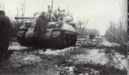 1945- Alsace Tank du 8e RCA appuyant l'infanterie dans les bois d' Onhenheim