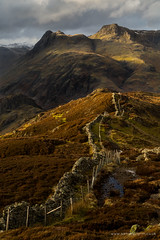 An afternoon on Lingmoor Fell photo by Sam Pilgrim