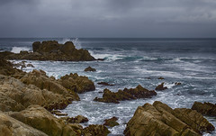 Pacific Grove Coastline photo by rschnaible