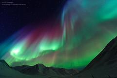 Aurora Borealis Above Alaska photo by TomNC