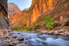 Zion National Park - Natural Narrows photo by Jeff Krause Photography