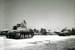 1ère Cie des Chars - 1941 - Camp de Quastina en Palestine - 1941 -  mai - Col P. Robedat