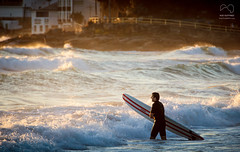 Early Morning Surf photo by Rod Gotfried Photography