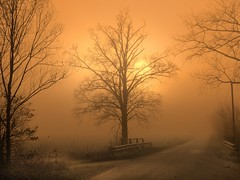 IMG_3609 sunset fog photo by pinktigger
