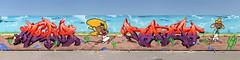 Speedy Gonzales wall photo by daddies nasty sons