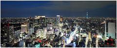 Tokyo Panorama 7165 photo by kbaranowski