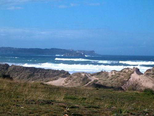 100481211 1ec310c144 Las olas de hoy Jueves, 16 de Febrero de 2006  Marketing Digital Surfing Agencia