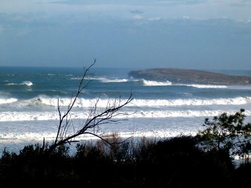 100804598 e3a8f2bd00 Las Olas de hoy,  Viernes 17 de Febrero de 2006.  Marketing Digital Surfing Agencia