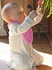 Leda checks out the plant!