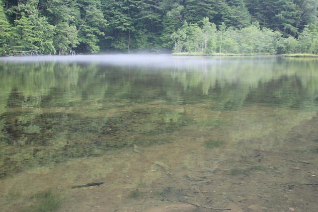 大自然の風景