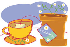 Illustration Friday - Camomile Tea