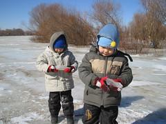 Taking ice