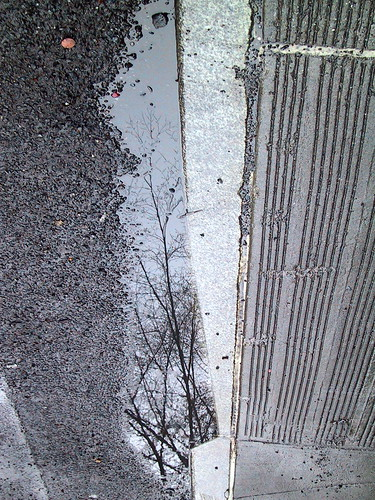 Reflection in the gutter