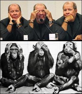 duda-macacos