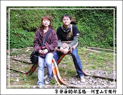 阿里山賞櫻行_彎曲的鐵軌