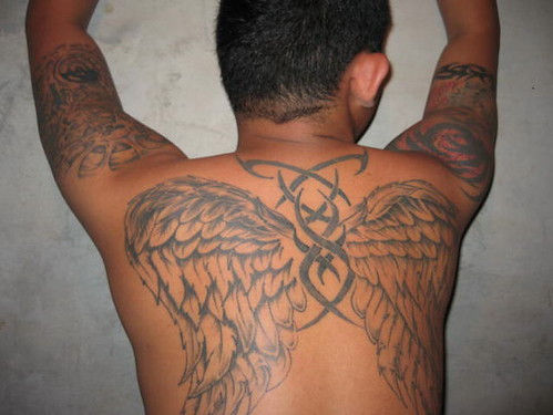 angel wings tattoos designs. We tribal tattoos latin 5.