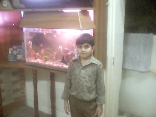 Hammad Around Fish Aquarium!