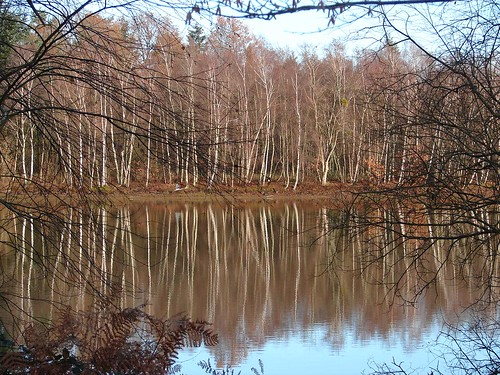 Loire Dec 05 274