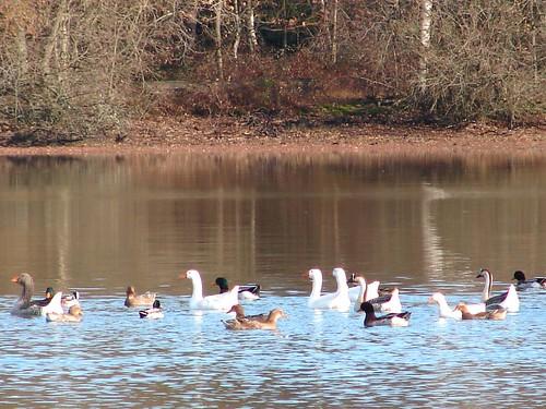 Loire Dec 05 281