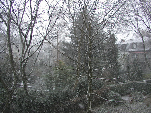 December Snow in Dusseldorf 2005 001