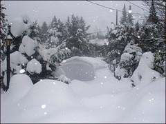 In-winterland