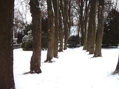 Jewish cemetery Hattingen