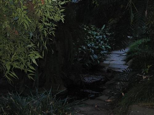 Parque2005 007