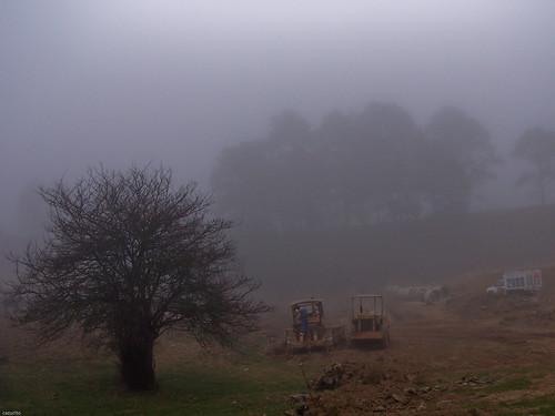 Trabajando en la neblina