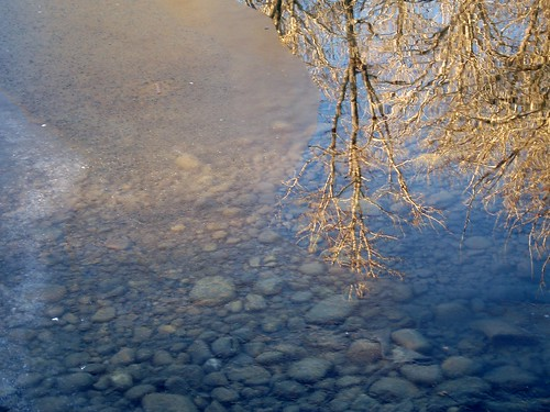 ice stones reflection