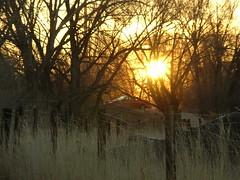 Sunrise over Shields St.