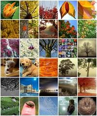 Mis fotos favoritas recolectadas en Flickr (2/3)