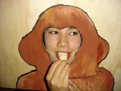 andie monkey