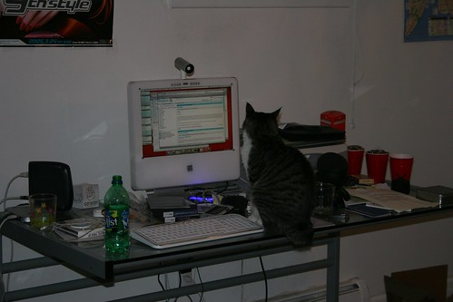 Buttons Checks His RSS Feeds