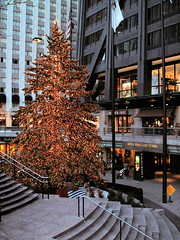 Christmas Tree at the Hancock Centre