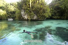 Lagoa em Palau