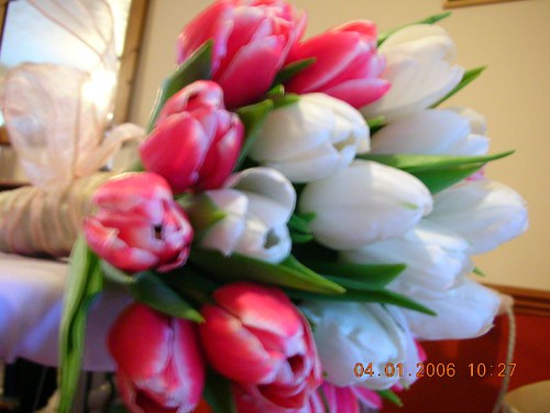 love is blooming