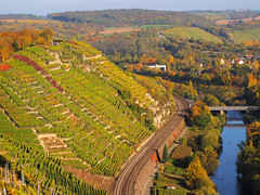 Vineyard Terraces above the Wine Route (Württemberger Weinstraße) photo by Batikart