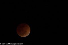 Blood Moon photo by Kukui Photography