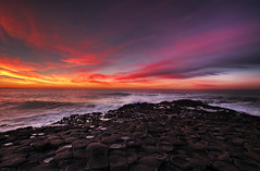 The Giant's Causeway photo by SJ Wray Photography
